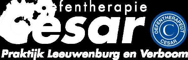 Praktijk Cesar Oefentherapie Leeuwenburg en Verboom